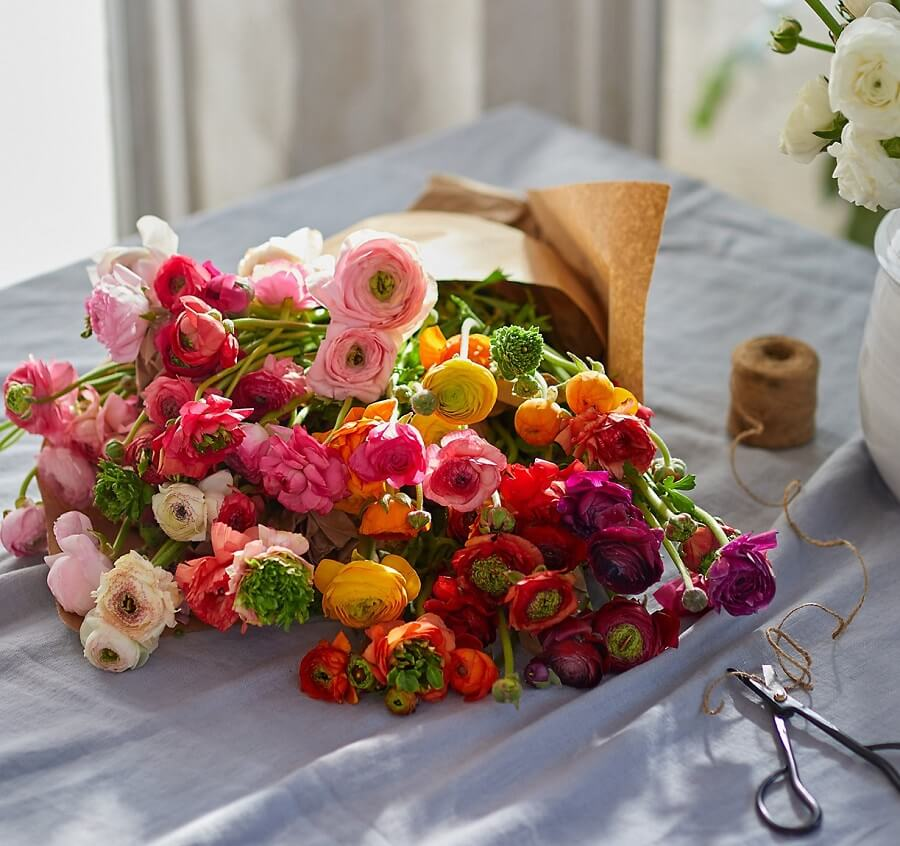 Terrain Flower Delivery in New Jersey