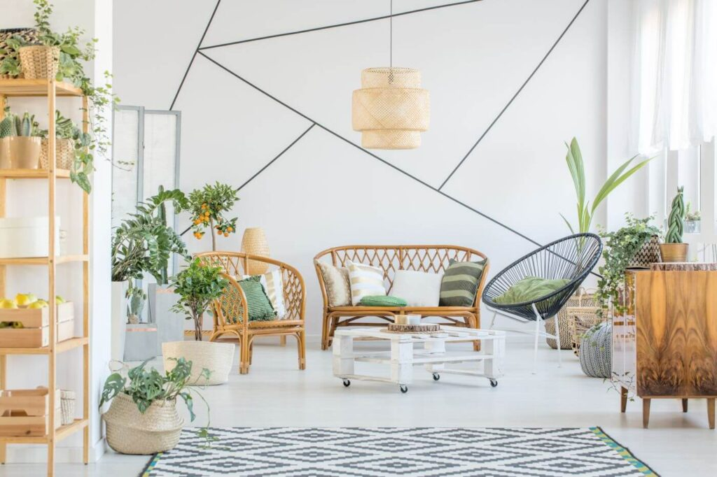 9 Best Feng Shui Plants for the Living Room