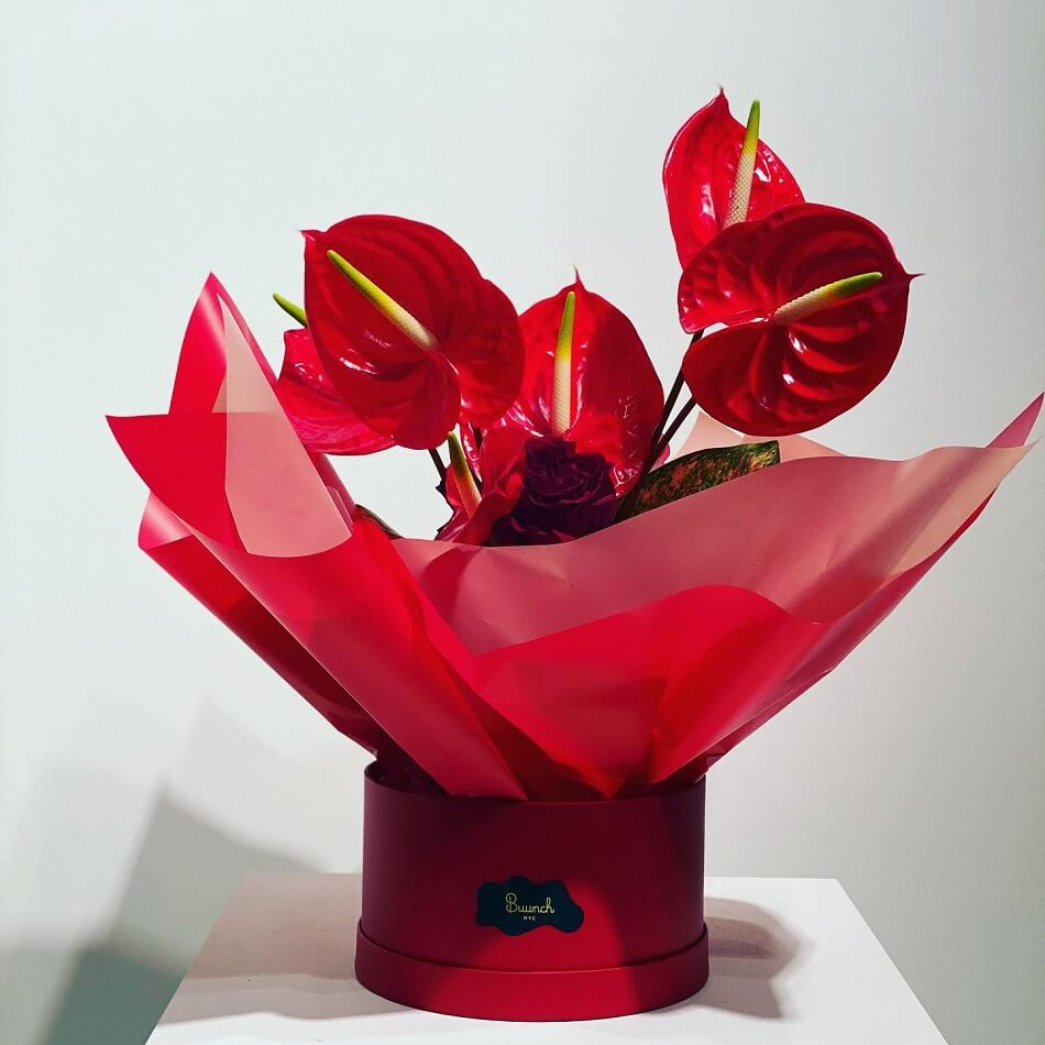 Buunch Luxury Flower Delivery Service in NYC