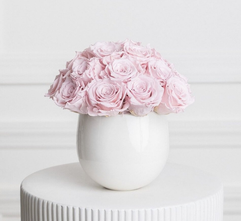 Ode a la Rose Preserved Roses Delivery