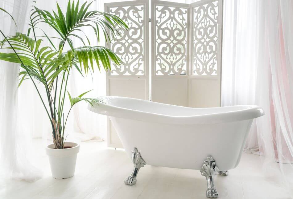 The Role of Feng Shui Plants in the Bathroom