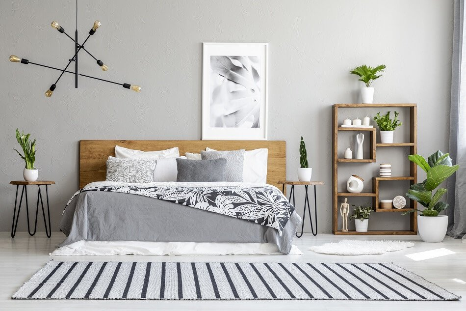 What Are the Primary Issues With Plants and the Bedroom