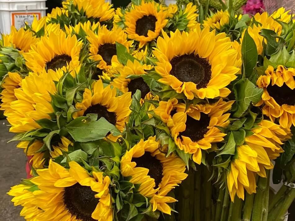 Bakersfield Flower Market