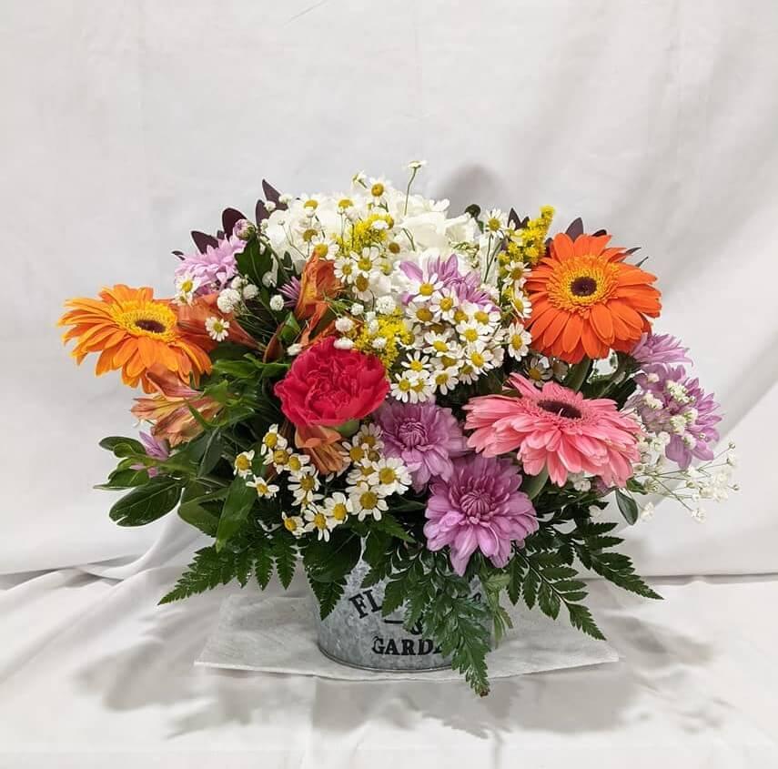 Plum Floral Arrangements in Arlington, Texas