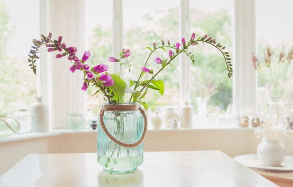 Suitable Gifting Occasions for Foxglove Flowers