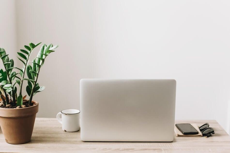 The Role of Office Desk Plants in Feng Shui