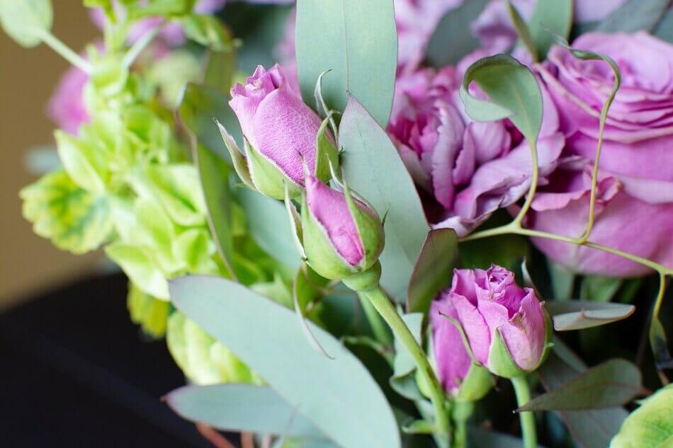 UrbanStems Pre Bloom Flowers