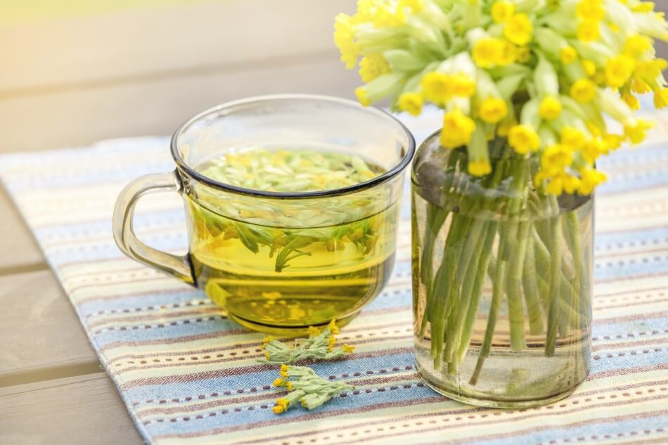 Uses and Benefits of Cowslip Flowers