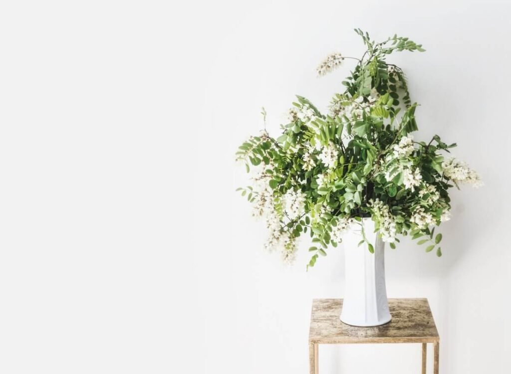 Suitable Gifting Occasions for Acacia Flowers