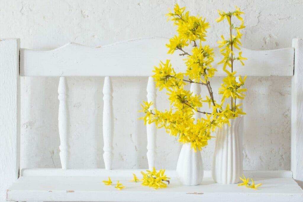 Japanese Language of Flowers