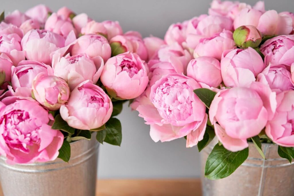 12 Best Flower Delivery Services in Laredo, TX