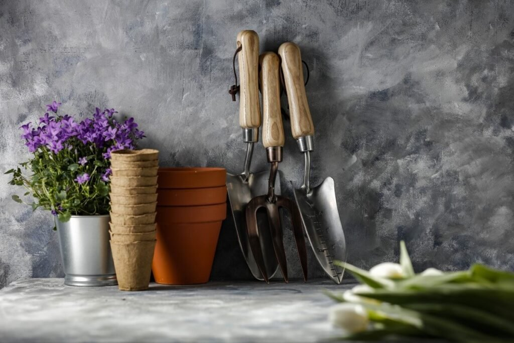 Essential Tools for Growing Texas Sage